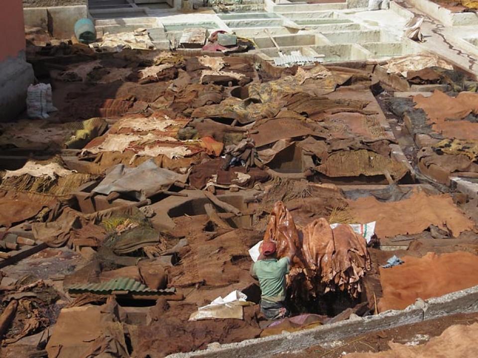 Die Besichtigung einer Gerberei in Marrakesch ist Pflicht