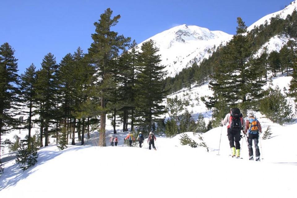 Skitouren Bulgarien - Aufstieg zum Vichren (2914m) Bulgarien