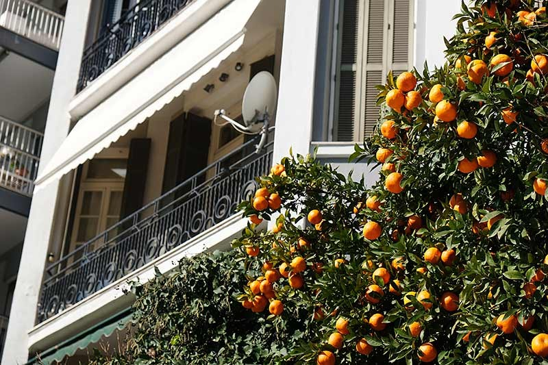 Orangen in den Straßen von Saloniki