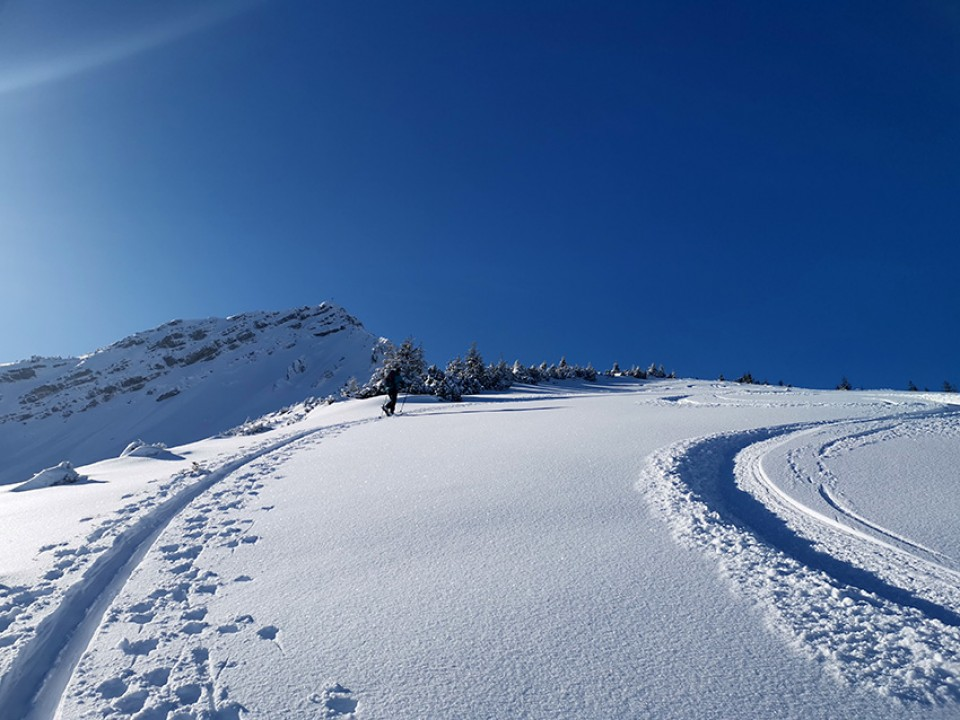 Der Gipfel der Scheinbergspitze im Hintergrund