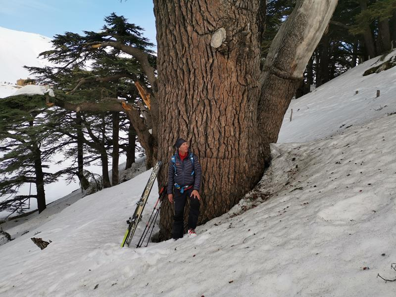 Libanon Skitouren Cedars Skiresort